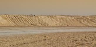 De duinen van het de woestijnzand van de Sahara Royalty-vrije Stock Foto