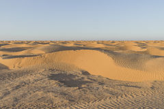 De duinen van het de woestijnzand van de Sahara Stock Afbeeldingen