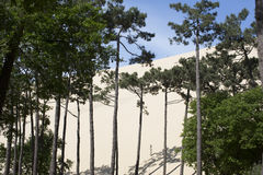 De duinen van het Pylazand Frankrijk Royalty-vrije Stock Foto's