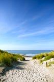 De duinen van het strand en van het zand Stock Foto's
