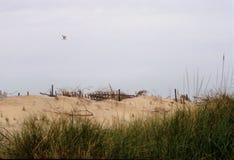 De Duinen van het strand - Stilleven Stock Foto