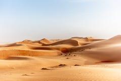 De duinen van het Wahiba-Zand verlaten in Oman bij zonsondergang tijdens a stock foto