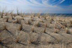 De duinen van het zand Stock Foto's