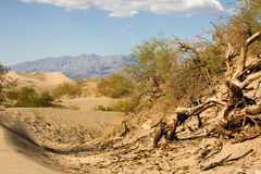 De duinen van het zand in de noordelijke Vallei van de Dood, Californië Royalty-vrije Stock Afbeelding