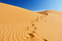 De duinen van het zand in de Sahara Royalty-vrije Stock Foto