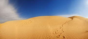 De duinen van het zand in de Sahara stock afbeeldingen