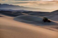 De duinen van het zand in de Vallei van de Dood Stock Fotografie
