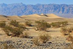 De duinen van het zand, de vallei van de Dood Stock Afbeelding