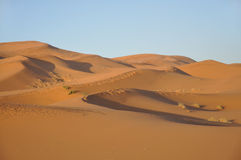 De duinen van het zand in de woestijn van de Sahara Royalty-vrije Stock Fotografie