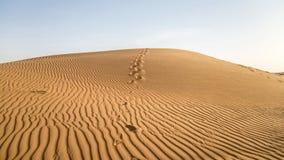 De duinen van het zand in de woestijn van Doubai Royalty-vrije Stock Foto's
