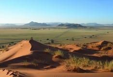 De duinen van het zand in de woestijn van Kalahari Royalty-vrije Stock Afbeelding