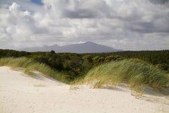 De Duinen van het zand en Hemel stock foto's
