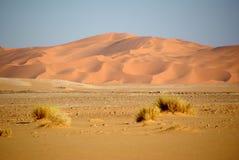 De duinen van het zand, Libië Stock Afbeelding