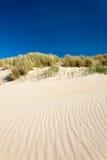 De duinen van het zand met beachgrass in Nederland Stock Afbeeldingen