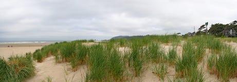 De duinen van het zand op strand Royalty-vrije Stock Afbeeldingen