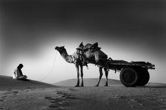 De duinen van het zand in Rajasthan Stock Foto's