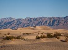 De Duinen van het Zand van de Vallei van de dood Stock Foto's