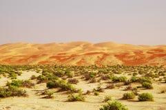 De Duinen van het Zand van Liwa royalty-vrije stock afbeelding