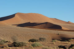 De Duinen van het zand van Soussus Vlei Stock Afbeelding