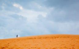 De duinen van het zand in Vietnam Stock Fotografie
