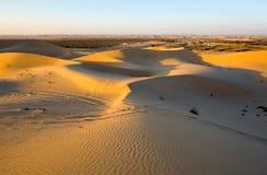 De duinen van het zand in woestijn royalty-vrije stock foto's