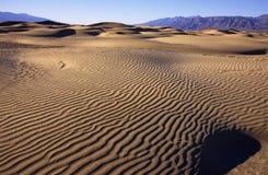 De duinen van het zand in woestijn Royalty-vrije Stock Fotografie