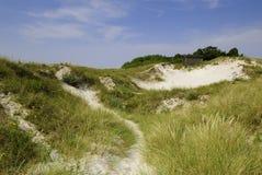 De duinen van het zand in Zuid-Zweden Royalty-vrije Stock Fotografie
