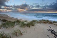 De duinen van het zeegezicht Stock Fotografie