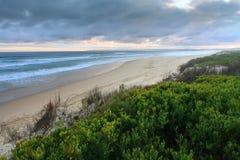 De duinen van het zeegezicht Stock Foto's