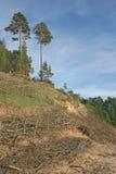 De duinenerosie van het zand Royalty-vrije Stock Fotografie