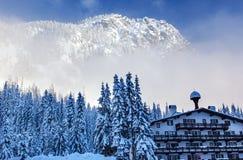 De Duitse Alpiene van de Bergsnoqualme van de de Bouwsneeuw Pas Washington stock afbeelding
