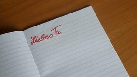 De Duitse met de hand geschreven brieven Beste Agenda verschijnt op een blocnote stock video