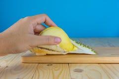 de durian pulp van de handgreep royalty-vrije stock afbeelding