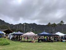 De duurzame Kustlijnen Hawaï houdt zijn jaarlijkse Aarde Dag Festiva royalty-vrije stock foto