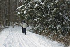 De dwars Skiër van het Land Royalty-vrije Stock Fotografie