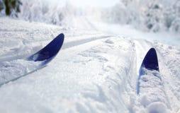 De dwars Ski van het Land Stock Afbeelding
