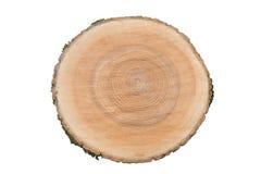 De dwarsdoorsnede van de boomboomstam Royalty-vrije Stock Fotografie