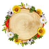 De dwarsdoorsnede van het logboek met bloemen Stock Foto's