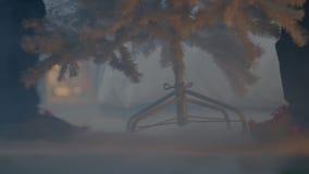 De dwergen herschikken de sprookjeboom stock videobeelden