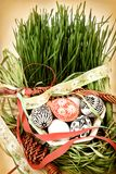 De Easter vida ainda Imagens de Stock Royalty Free