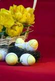 De Easter vida ainda dos ovos e dos tulips Imagem de Stock