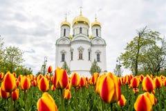 De Eautifulkerk in de voorgrond van Rusland daar is helder gekleurd t Royalty-vrije Stock Afbeelding