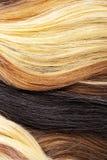 De echte textuur van het vrouwenhaar Menselijk haar weft, Droog haar met zijdeachtige volumes De echte Europese textuur van het m Royalty-vrije Stock Afbeeldingen