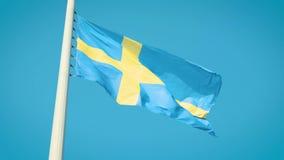 De echte vlag van Zweden Vlag van Zweden stock footage