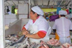 De Ecuatoriaanse vrouw verkoopt verse vissen in de markt Quito, Ecuador royalty-vrije stock afbeelding