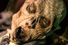 De edelen van het verschrikkingsmasker uit doodskist Royalty-vrije Stock Afbeelding