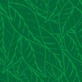De eenvoudig groene achtergrond van het theebladen naadloze patroon vector illustratie