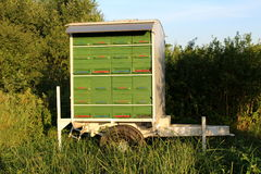 De eenvoudige aanhangwagen van de binnenplaats groene en rode houten bijenkorf stock foto