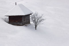 De eenzaamheid van de winter met boom en plattelandshuisje royalty-vrije stock foto