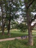 De eenzame bank in het park royalty-vrije stock afbeeldingen